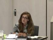VVD-Tweede Kamerlid Dilan Yeşilgöz-Zegerius tijdens het Rondetafelgesprek over de kosten en baten van de Klimaatwet