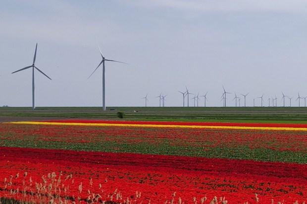 """Titelfoto bij artikel Dolf van Wijk op OpinieZ.com """"Meten met twee klimaten"""""""