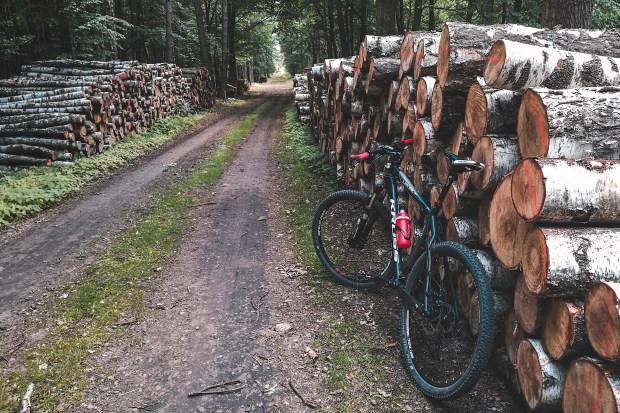 """Titelfoto bij artikel Alma van hees op OpinieZ.com """"Stop met 'groene' stroom en red de aarde!"""""""