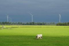 """Titelfoto bij artikel Gert-Jaap van Ulzen voor OpinieZ.com """" Stikstof heeft een E-nummer en is geen broeikasgas"""""""