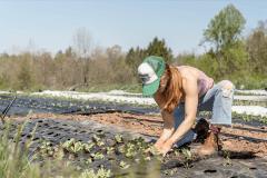 Titelfoto bij artikel Biologische Great Reset bedreigt de landbouw Alma van hees opiniez