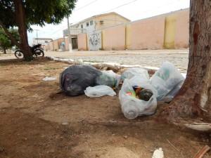 20160125153325-300x225 Mato, lixo e esgotos a céu aberto mostram descaso da Gestão do Prefeito Junior Nobrega no município da Prata, no Cariri