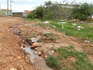 20160125175357-300x225 Mato, lixo e esgotos a céu aberto mostram descaso da Gestão do Prefeito Junior Nobrega no município da Prata, no Cariri