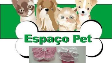 Confira as novidades do Espaço Pet : Promoção de Tosa e Banho e uma nova coleção para seu Pet 4
