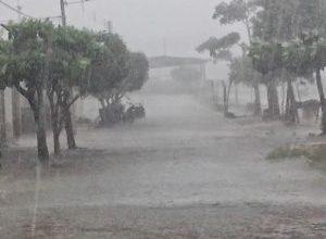 Verão deve ter chuvas dentro da média no Cariri, Curimaraú e Sertão, diz AESA 5