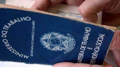 225 vagas de emprego são ofertadas pelo Sine em cinco cidades paraibanas 3