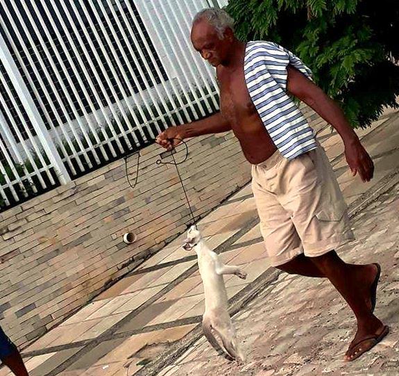 homem-mata-gat0-cajazeiras Homem desfila com gato enforcado em plena luz do dia na Paraíba