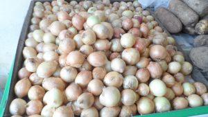 SAM_7007-Cópia-1-300x169 Verdurão JK em Monteiro:  Frutas e verduras selecionadas diretamente da CEASA