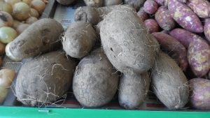 SAM_7010-Cópia-300x169 Verdurão JK em Monteiro:  Frutas e verduras selecionadas diretamente da CEASA