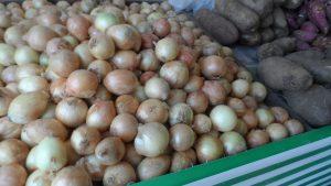 SAM_7016-Cópia-300x169 Verdurão JK em Monteiro:  Frutas e verduras selecionadas diretamente da CEASA