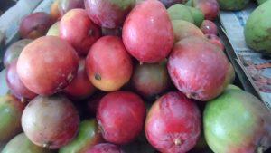 SAM_7046-300x169 Verdurão JK em Monteiro:  Frutas e verduras selecionadas diretamente da CEASA