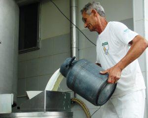leite-de-cabra-696x555-1-300x239 Taperoá foi o município que mais produziu leite de cabra no Brasil, 543 mil litros, em 2017