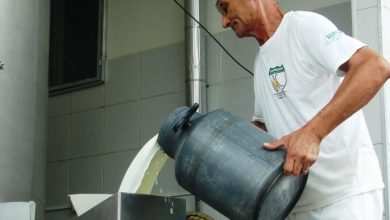 Taperoá foi o município que mais produziu leite de cabra no Brasil, 543 mil litros, em 2017 6