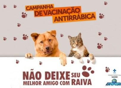 """timthumb-1 """"Dia D"""" de Vacinação contra a Raiva em Cães e Gatos acontece neste sábado em Monteiro"""