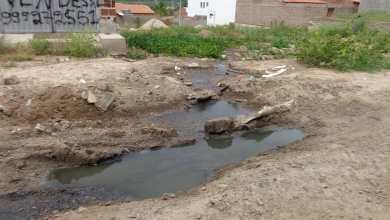 Moradores denunciam esgoto e falta de saneamento em São Sebastião do Umbuzeiro 1