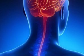 meningite-520x347 Paraíba já registrou dez casos de meningite em 2019