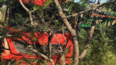 Carreta de Monteirense quebra barra de direção e invade matagal no Piauí 1