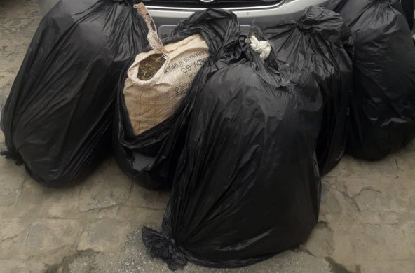 droga-galante-3-592x390 Duas mulheres são presas com mais de 50kg de maconha, em distrito de Campina Grande
