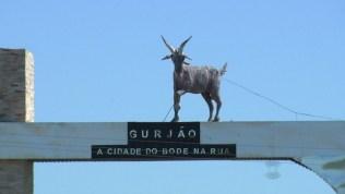 bode-festa Festa do Bode na Rua 2019 começa nesta quinta-feira (18), em Gurjão, PB