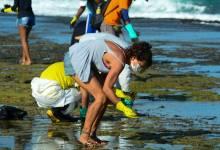 Marinha diz que manchas de óleo no Nordeste se concentram em Pernambuco 7