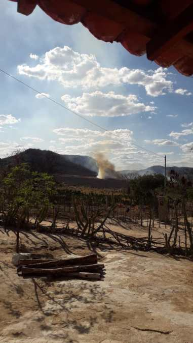 IMG-20191201-WA0203-225x400 Incêndio volta a atingirzona rural de Monteiro