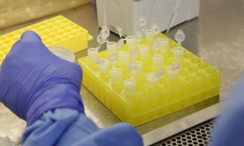 coronavirus-1-12-668x400 Vacina da covid-19 está em estágios finais, relatam cientistas de Israel