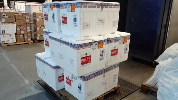 novo-lote-vacina-700x394 Chega ao Brasil o primeiro lote de vacinas da Pfizer contra a Covid com 1 milhão de doses