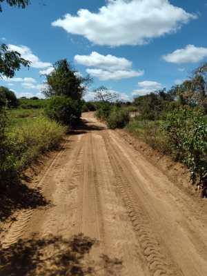 Agricultura-1-300x400 Na semana em que se comemora o São João, Secretaria de Agricultura realiza verdadeiro mutirão de ações na zona rural