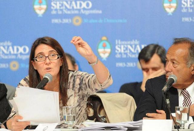 Cecilia Rodríguez Ministra de Seguridad de la Nación en el Senado - Foto: