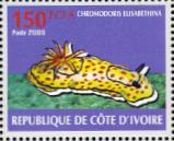 stamp Goniobranchus annulatus - Cote d'Ivoire