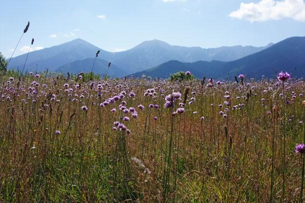 Andorra: Felder und Berge