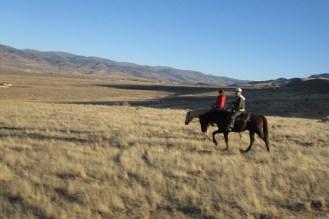 Durch die Prärie bei Reno