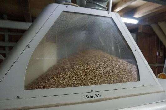 Getreide in der Mühle