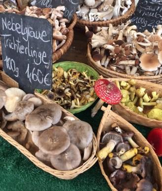 Pilze auf dem Markt