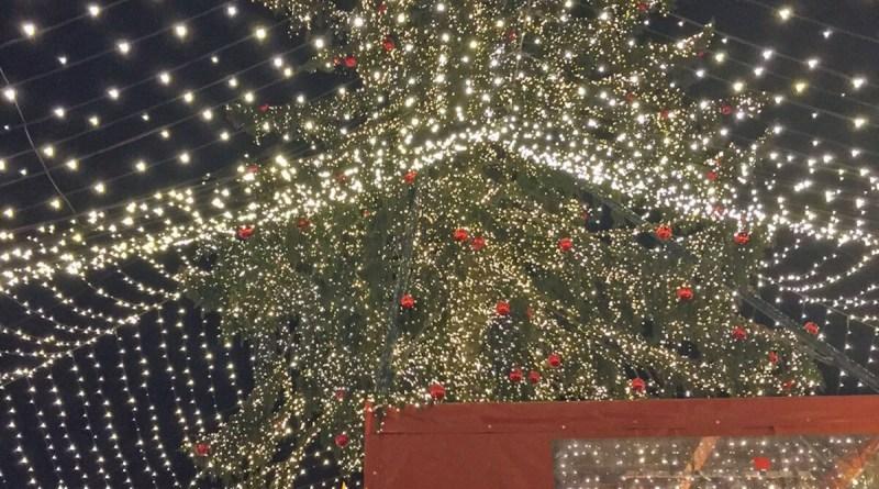 Weihnachtsmarkt am Dom (Foto: J. Düspohl)