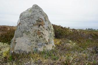 Sehr alter Stein