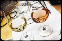 Bei Wein und Wort