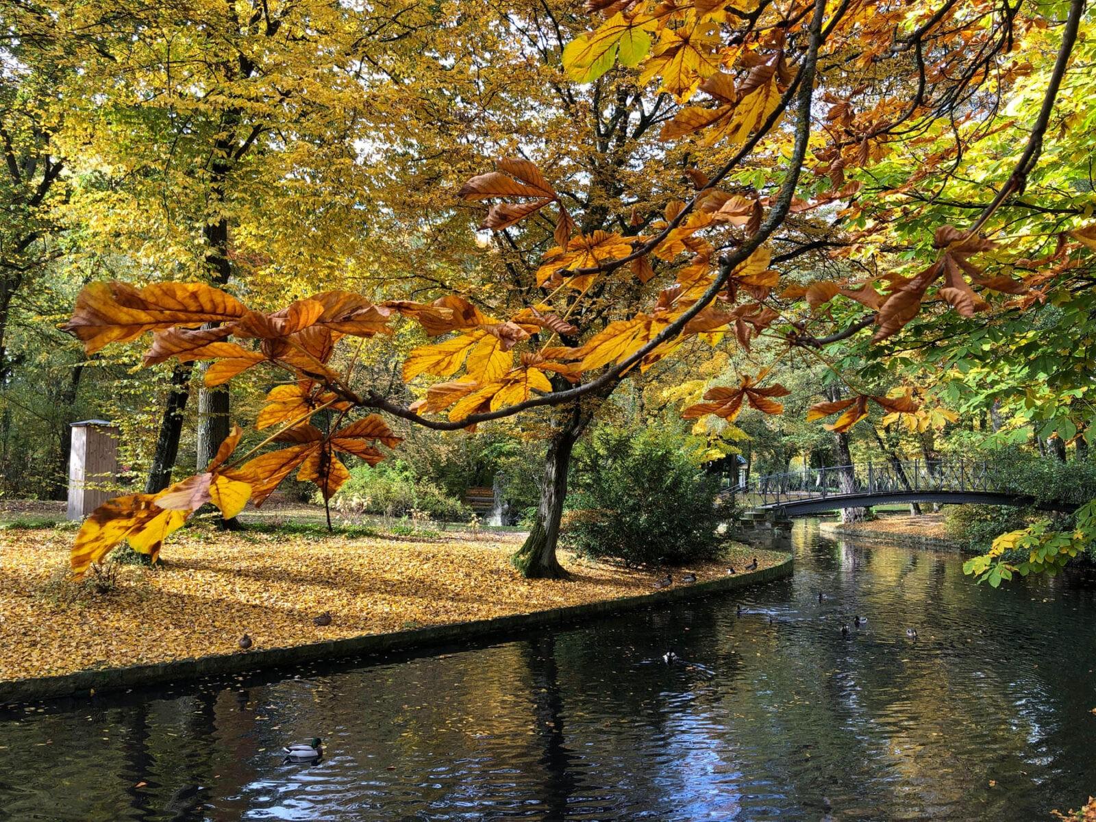 Parks in Bayreuth: Raus ins Grüne