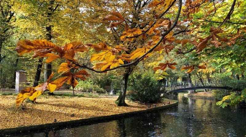 Im Bayreuther Hofgarten, einem der schönsten Parks in Bayreuth