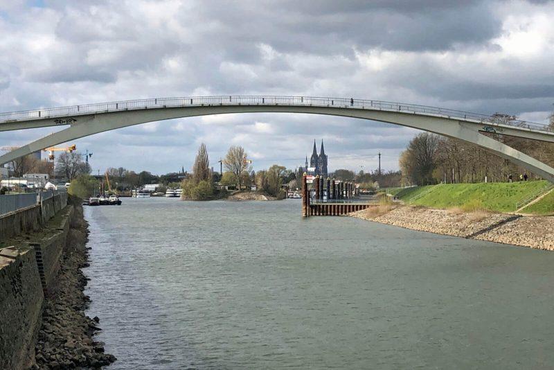 Der Katzenbuckel am Rhein