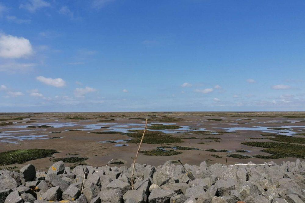 Blauer Himmel an der Küste