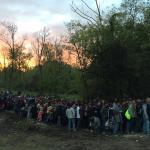 Refugees accross the hungarian border