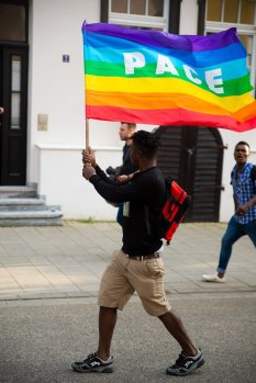 Ellwangen Pace Flag