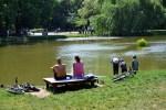 picnicfestival ved Furesøen