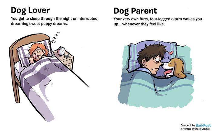 Dog Lover Vs Dog Parent