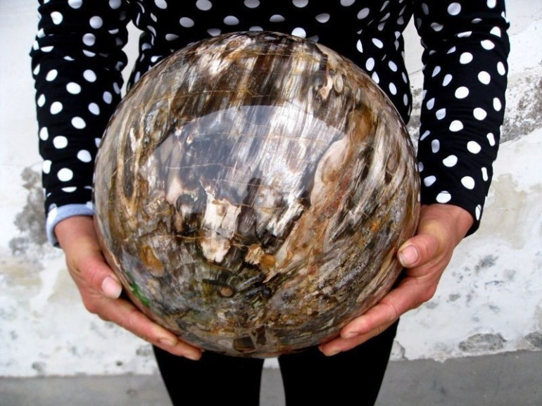 A perfectly polished sphere of petrified wood.