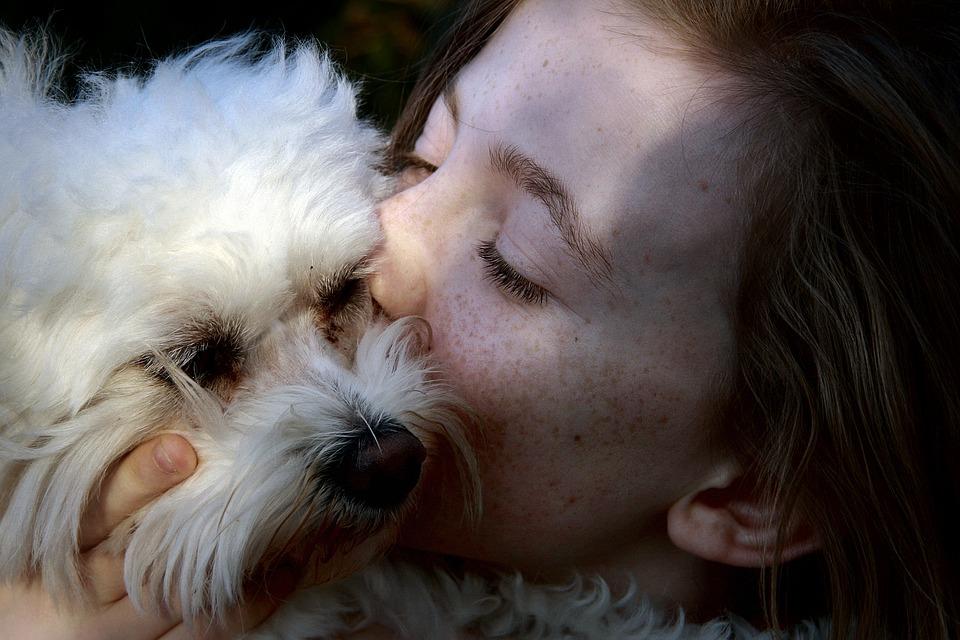 Découvrez les 10 beaux motifs d'avoir un animal