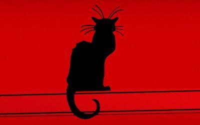 """""""Chat noir"""" pierwszy artystyczny kabaret"""