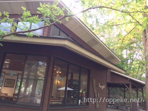 神戸森林植物園,ランチ