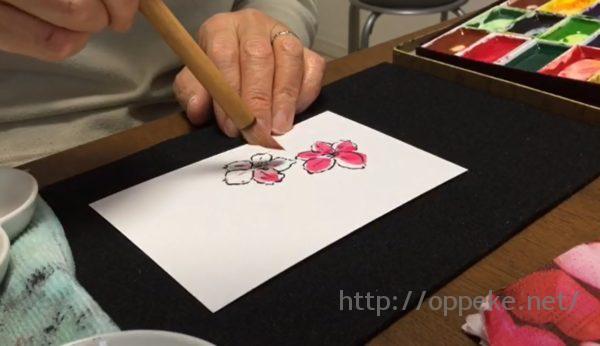 【絵手紙動画】桜の塗り方Youtube第2弾!色をつけてみました